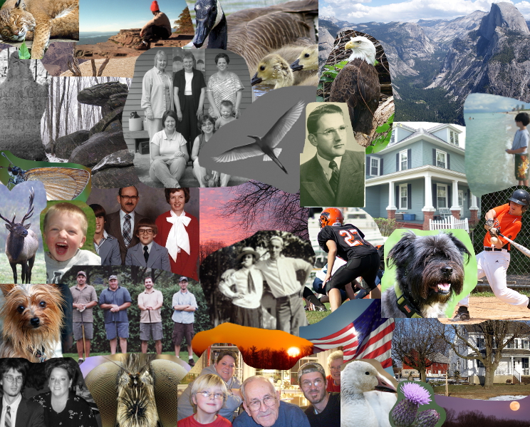 Kreider Family Photo Collage